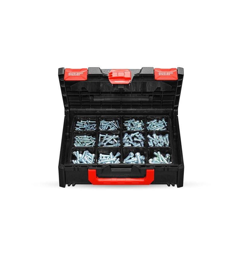 Schroeven: Assortiment cilinderbouten, ISO 4762 STRAUSSbox