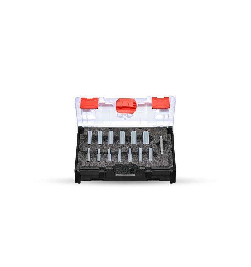 Dopsleutel: Dopsleutelset 1/4 lang in STRAUSSbox mini